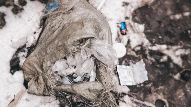 В Петербурге экологические аварийные службы за неделю приняли 180 обращений