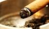 Питерские курильщики против антитабачного закона