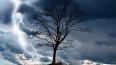 МЧС предупреждает горожан о грозе и штормовом ветре