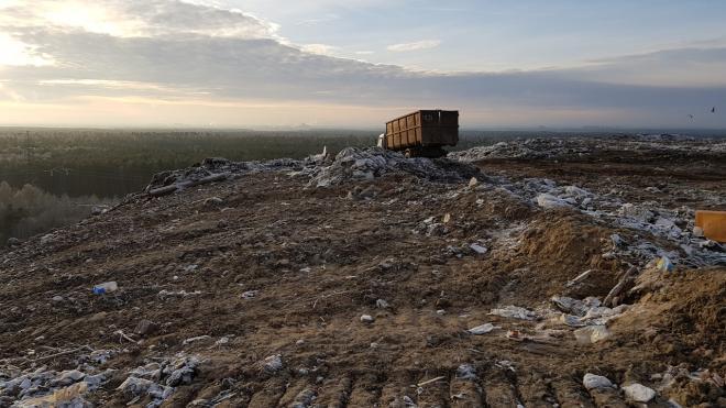 """Росприроднадзор подал иск в арбитраж о закрытии полигона """"Северная Самарка"""" в Ленобласти"""