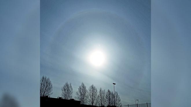 В петербургском небе заметили три солнца