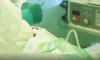 Петербургский школьник скончался в больнице после травмирования электричкой в Лисьем Носу