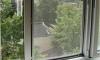 Трехлетний мальчик в Петербурге разбился, выпав из окна