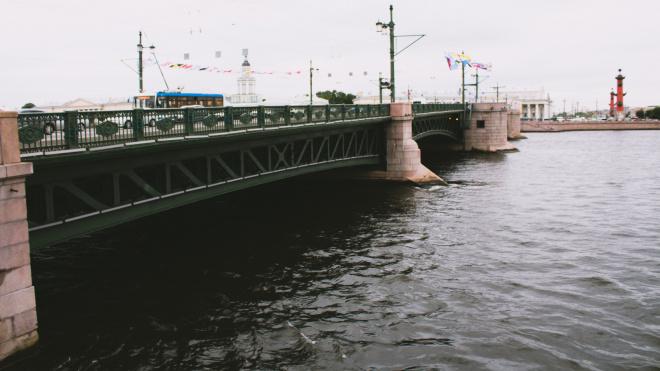 В ночь на понедельник температура воздуха в Петербурге опустится до 6 градусов