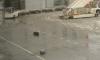 Фотофакт: в Пулково грузчики выронили багаж на мокрый асфальт и забыли