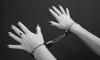 Депутат Верховной рады принес Яценюку наручники из секс-шопа