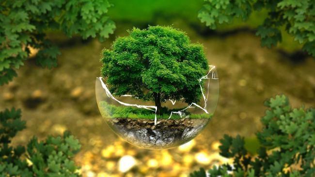 """""""Не спасать планету, а построить с ней партнерские отношения"""""""