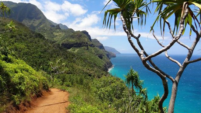 На Гавайях на месте крушения вертолета найдены тела шести погибших