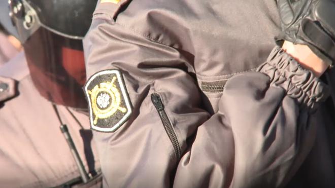 Два нетрезвых петербуржца выломали дверь Дома детского творчества на Фонтанке