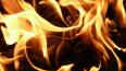 Пожар в коммуналке на Волковском ликвидировали за ...
