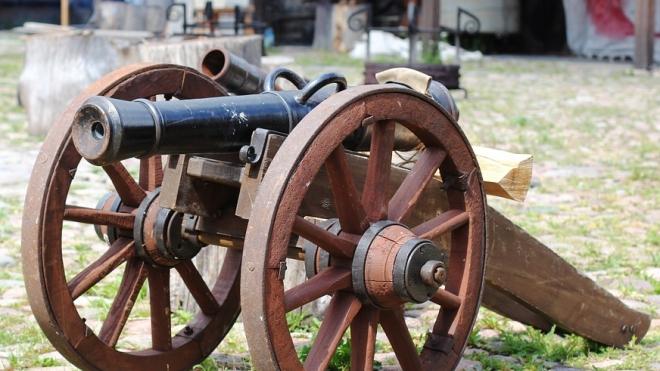 Холостой выстрел из старинной пушки лишил зрения подростка в Ленобласти