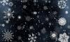 Наконец-то зима: в Ленобласти ждут похолодания до -17 градусов