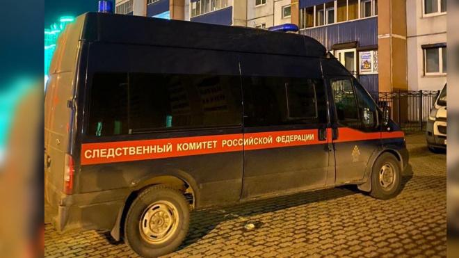 Подозреваемого в убийстве подростка нашли и задержали в Пушкине