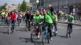 """27 мая в Петербурге пройдёт """"Зеленый марафон """"Бегущие ..."""