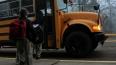 Выборг-банк обезопасит школьников от мошенников