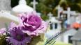 На Северном кладбище в поселке Парголово захоронят ...