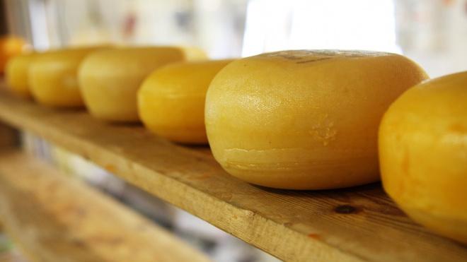 По пути в Петербург в деревне Лобок задержали полтонны белорусского сыра