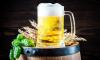 На чемпионате мира по футболу 2018 будут продавать пиво на стадионах и в фан-зонах