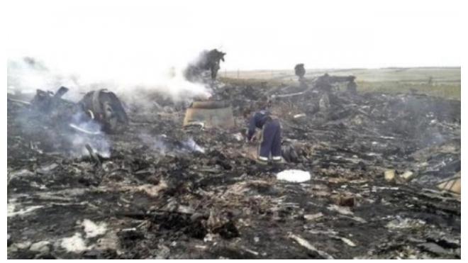 Минобороны назвало антироссийским доклад Bellingcat о причинах катастрофы MH17