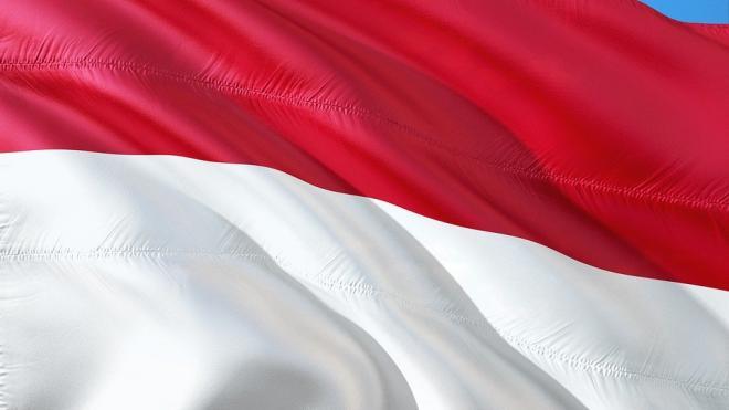 Индонезия отказалась пустить к себе американские самолеты-разведчики