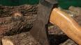 В Перми топором зарубили вдовца и его 11-летнего сына