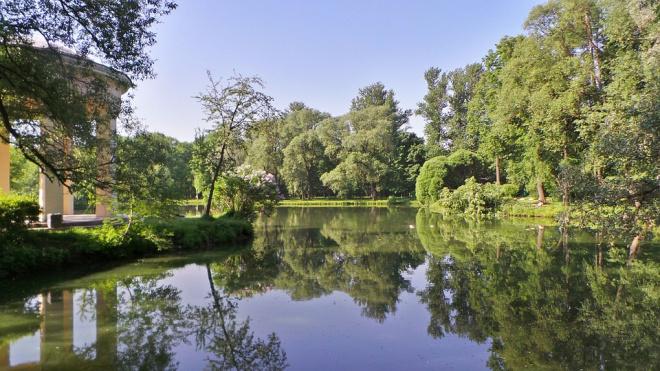 В петербургских парках запретили жечь листву и развешивать гамаки