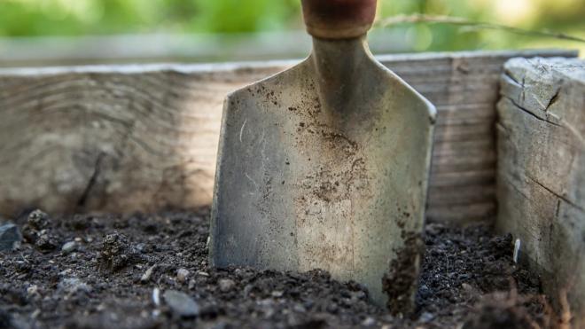 Мужчина из Подпорожского района отработает 20 часов за неуплату алиментов