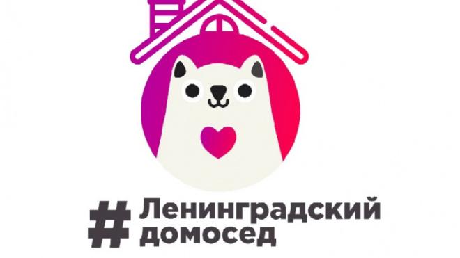 "Дрозденко объявил новый конкурс ""Ленинградский домосед"""