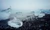 В Петербурге делами Арктики будут заниматься 77 человек