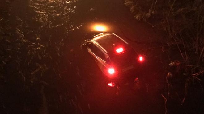 Автоледи влетела на иномарке в реку Оккервиль