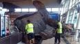 """Огромный орел из """"Хоббита"""" упал с потолка аэропорта ..."""