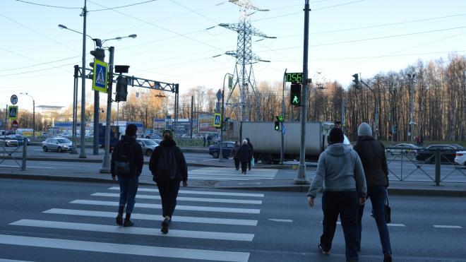 В 2020 году в авариях на дорогах Петербурга и Ленобласти погибли 19 детей