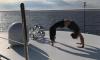 Ксения Собчак встала на мостик, показав идеальную форму