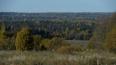 Объем производства продукции лесного комплекса за ...