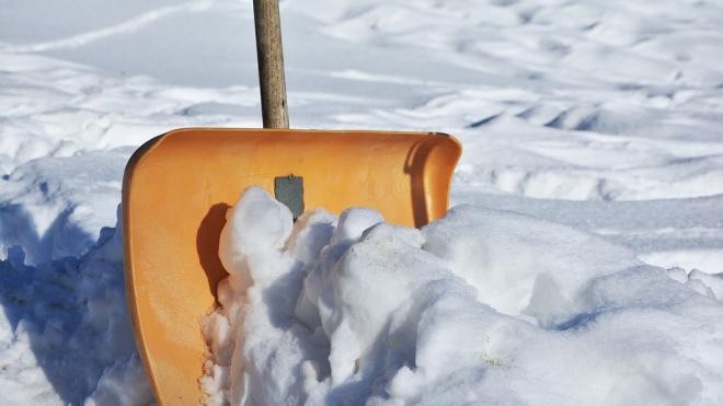 Петербургские учителя в выходной день вышли убирать снег