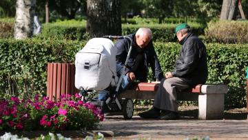 Жители Петербурга выберут лучший сад в городе