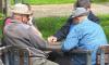 В Ленобласти братья жестоко убили восьмерых пенсионеров