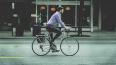 От Светогорска построят новую велодорожку до Финляндии ...