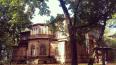 Албин поручил пересчитать деревянные памятники в Петербу...