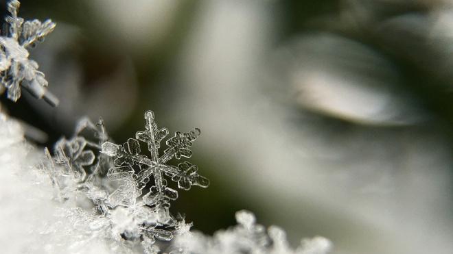 В Петербурге 28 февраля будет солнечно и снежно