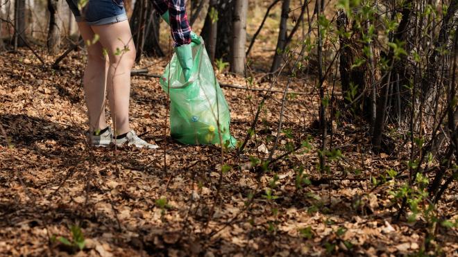 В Выборгском районе уменьшен размер платы за мусор