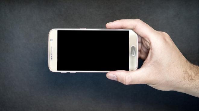 Раскрыто хищение из салона сотовой связи на проспекте Просвещения