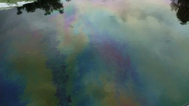 Очевидцы рассказали, что в реке Ижора моют канистры из-под солярки