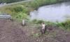В Приморье погибла семья из Уссурийска, улетев на машине в реку