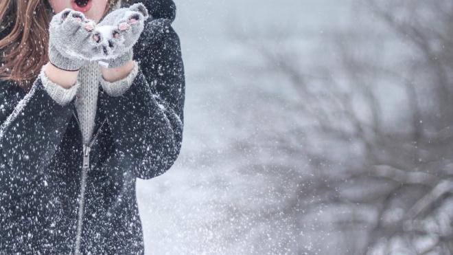 Выходные в Петербурге начнутся с мокрого снега
