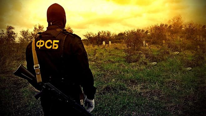 ФСБ предотвратила контрабанду драгметаллов из России в Германию