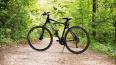 В Невском районе задержали похитителей велосипедов ...