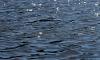 В озере в поселке Каменка выловили тело молодой утопленницы
