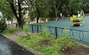 Двор на Рубежной, 36 в Выборге благоустроили по программе «Комфортная среда»