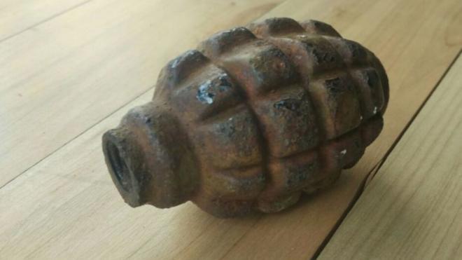 В Пулковском парке на Московском шоссе нашли гранату военных времён